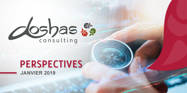 Janv2019 Doshasconsulting Perspectives Entete